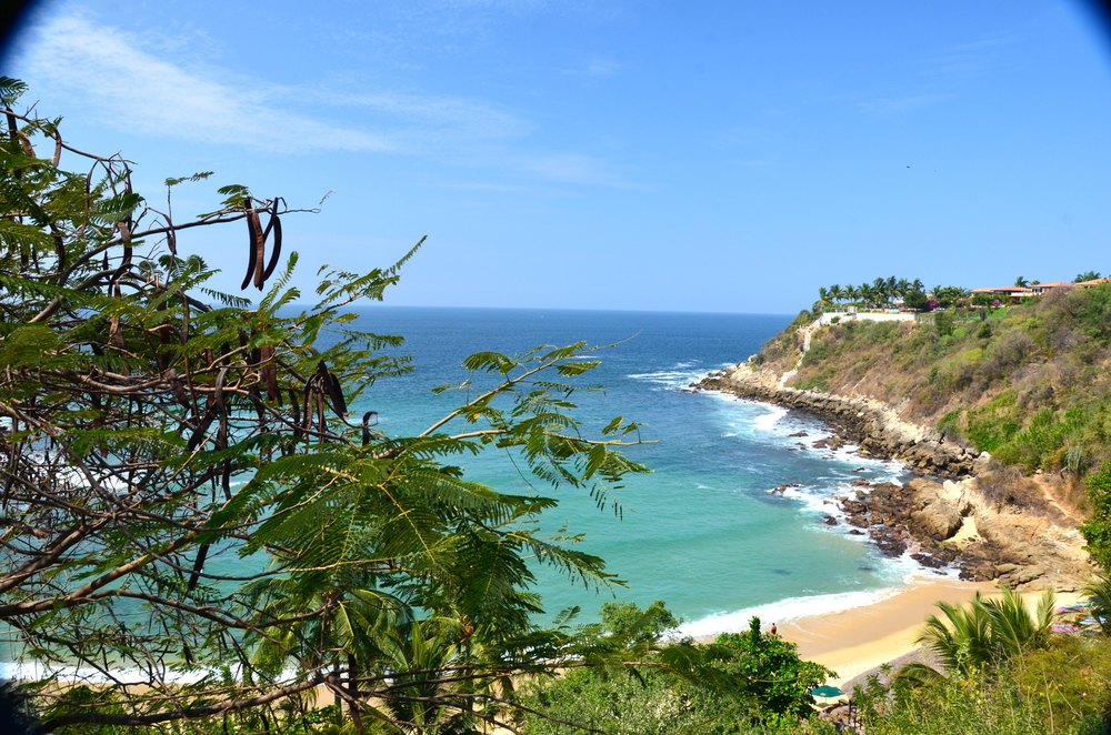 There are 5 separate beaches in Puerto, this is Playa Carrizalillo, good for swimming, snorkeling and a beginner surf break. There are 176 steps to get down to the beach!