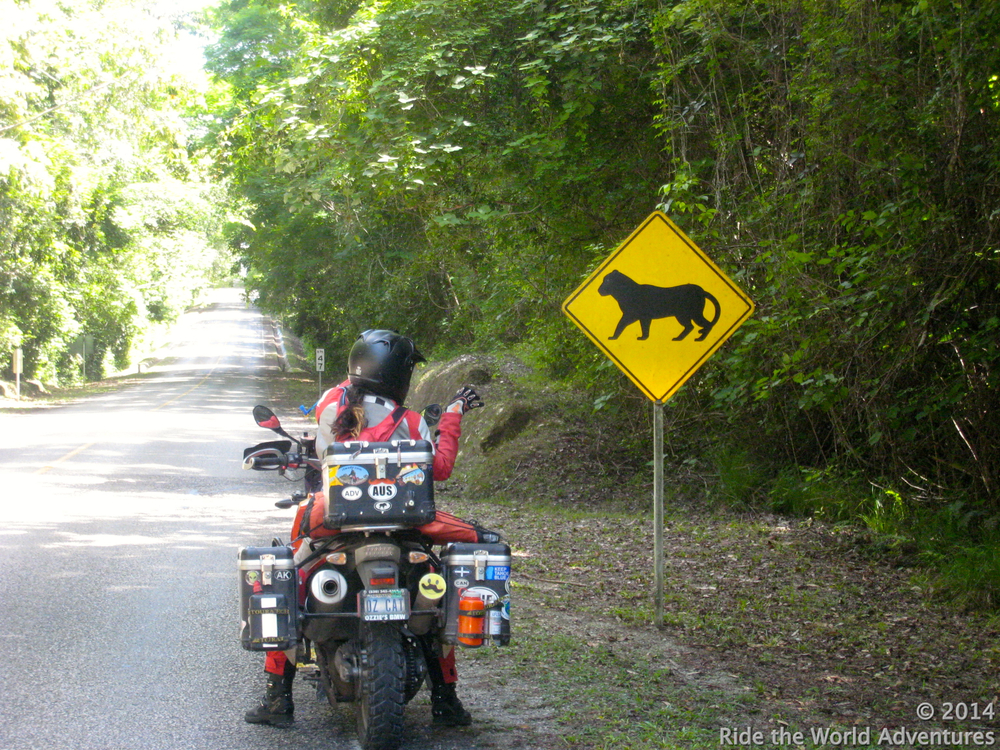 Fun with road signs as we enter the park….Jaguar