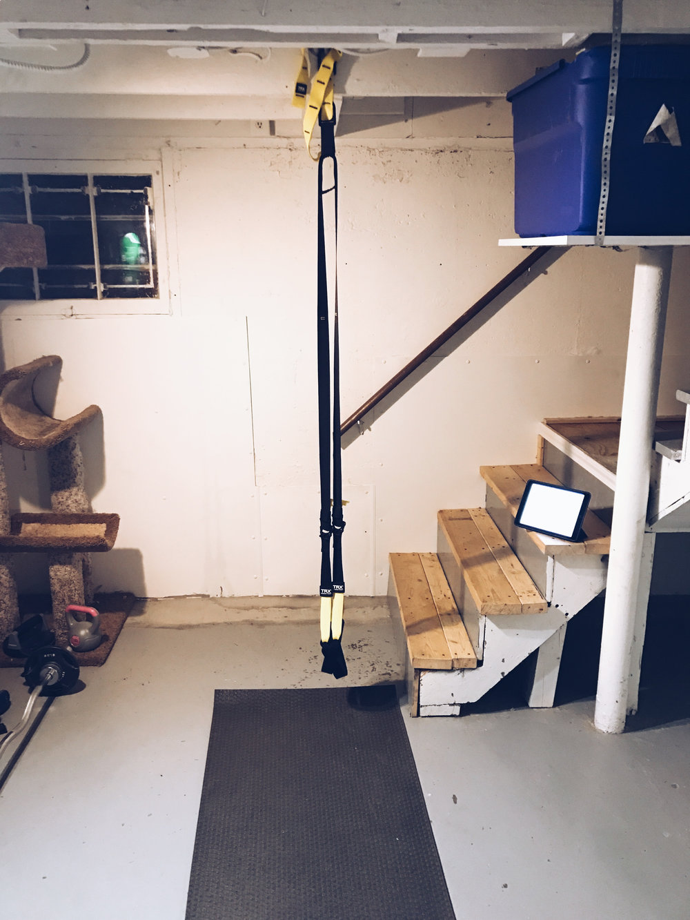 For those of you not familiar with TRX straps, here is a picture of mine hanging in my basement.