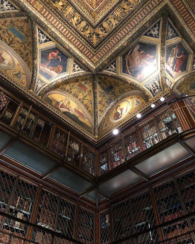 #stunning library.