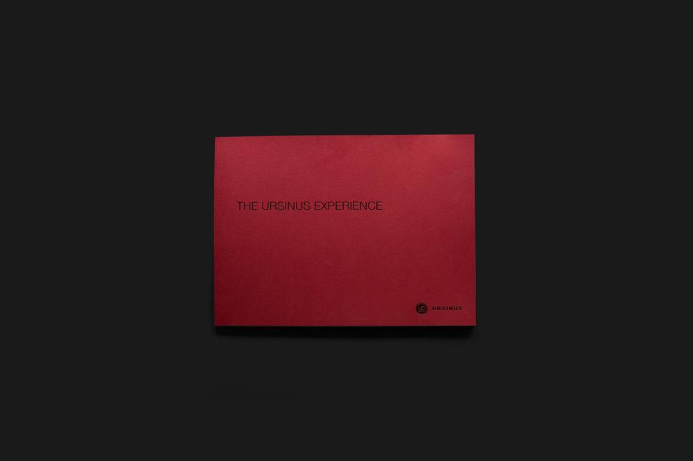 The Ursinus Experience cover design