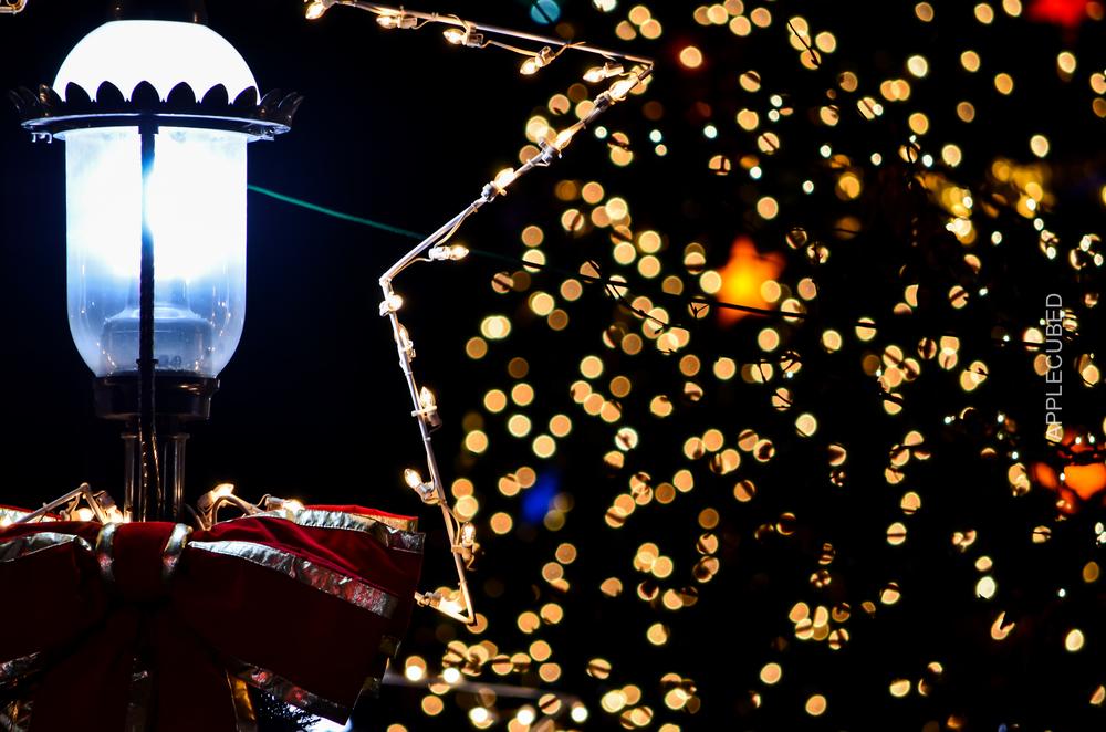 """Festive"" - 2013"