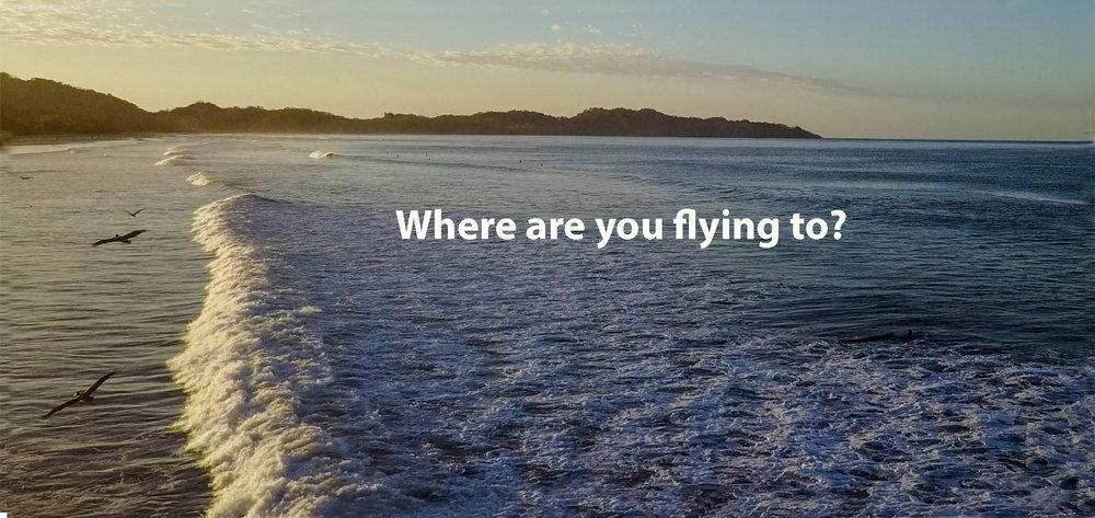 pelican-drone-wcopy.jpg