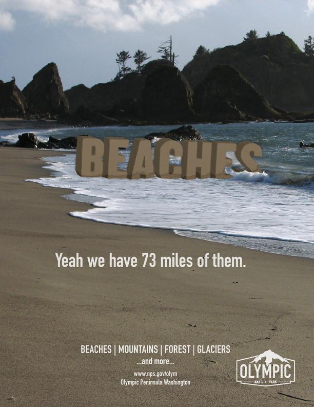 beachfull.jpg
