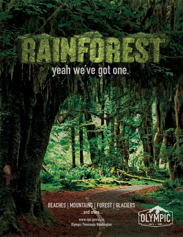 rainforest_full.jpg