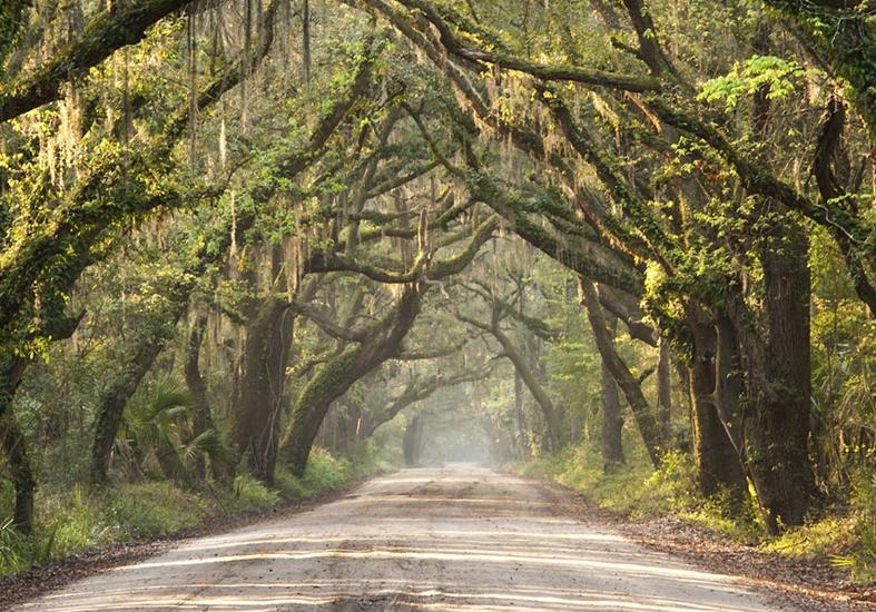 Weekend Road Trips South Carolina Good News Travels