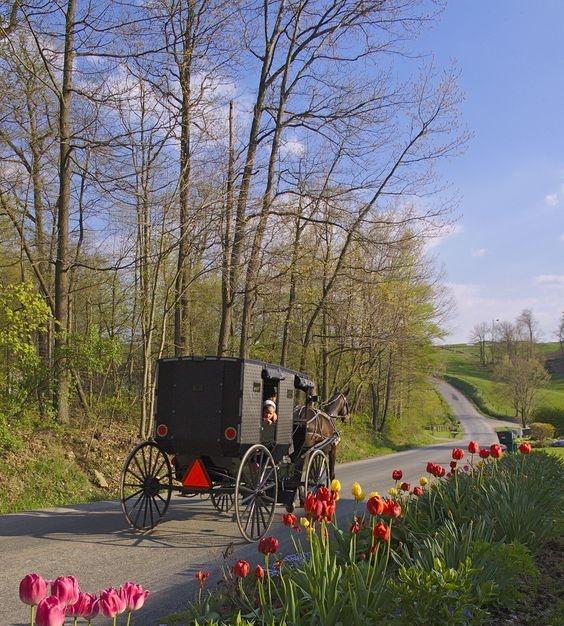 Ohio, Amish Country