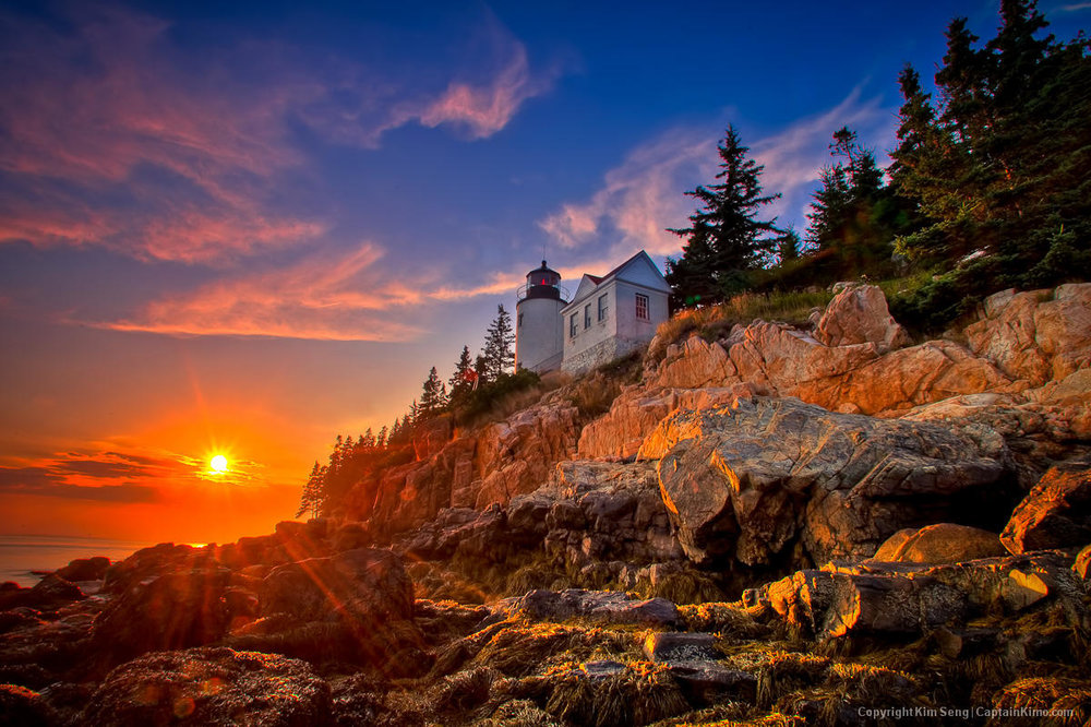 Acadia National Park (Image Source: Maine Public)
