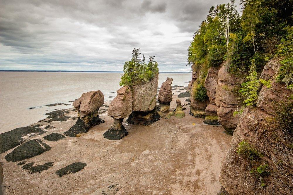 Canada-New-Brunswick-hopewell-rocks-17.jpg