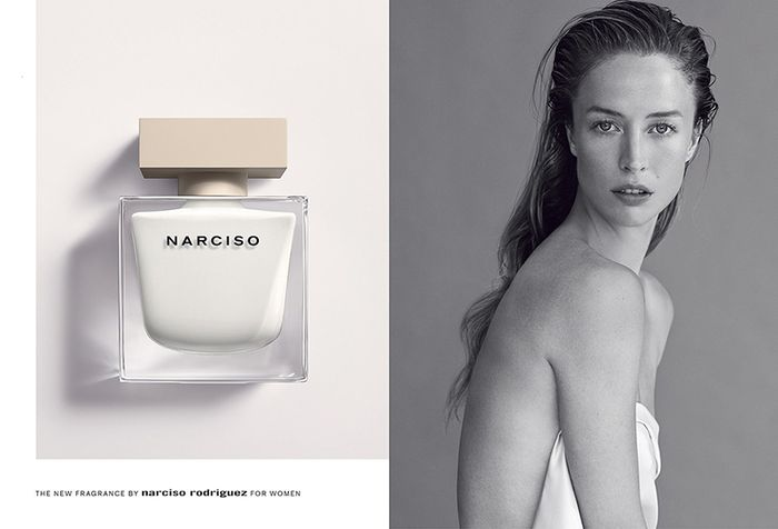 Narciso   by Josh Olins