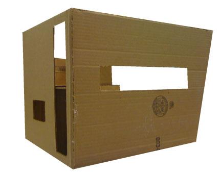 cardboard house 3/4 view