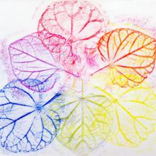 leaf220.jpg