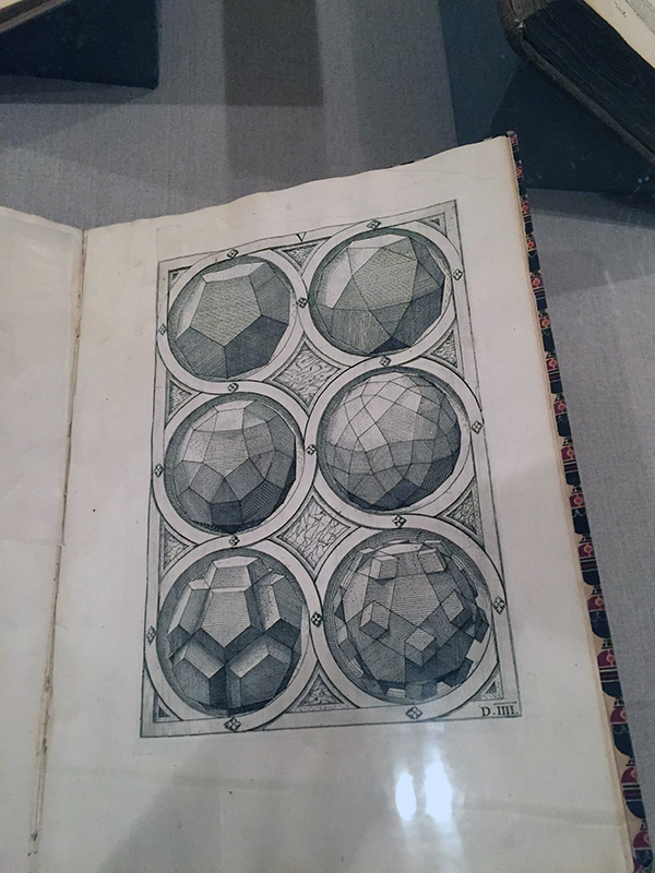 Dodecahedron and variants from Perspective of the Regular Bodies, 1568