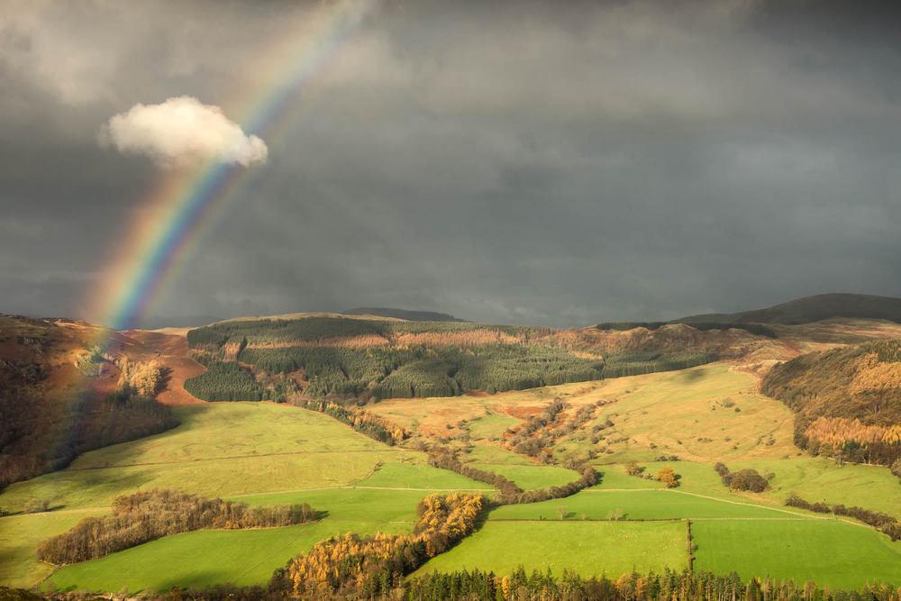 Martindale rainbow