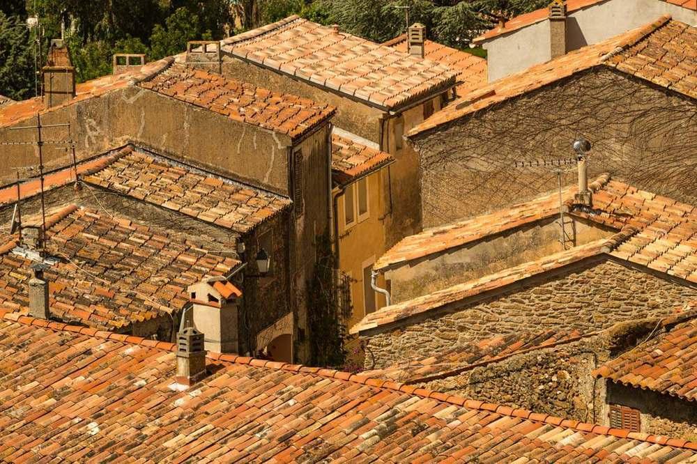 bormes roofs