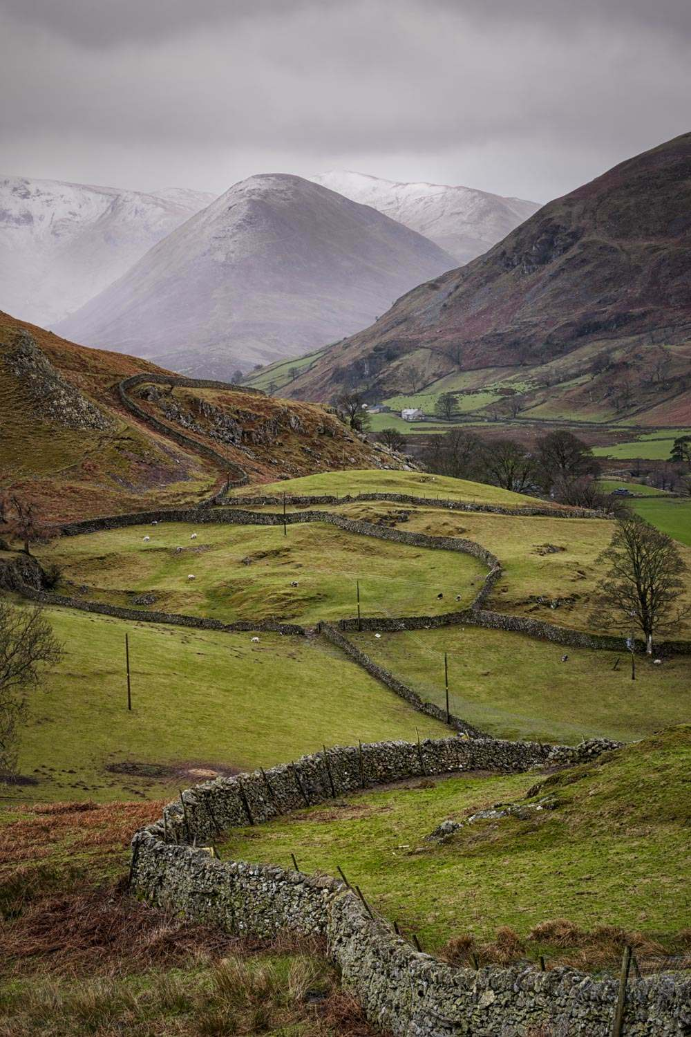 Martindale Maze - Lake District Feb 2016