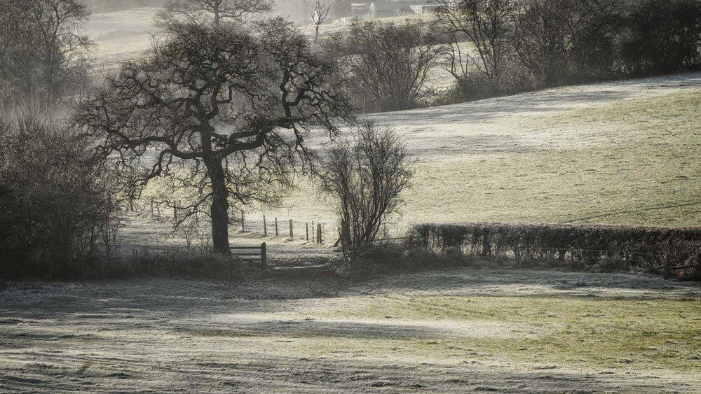 Lapworth Frost - Dec 2016