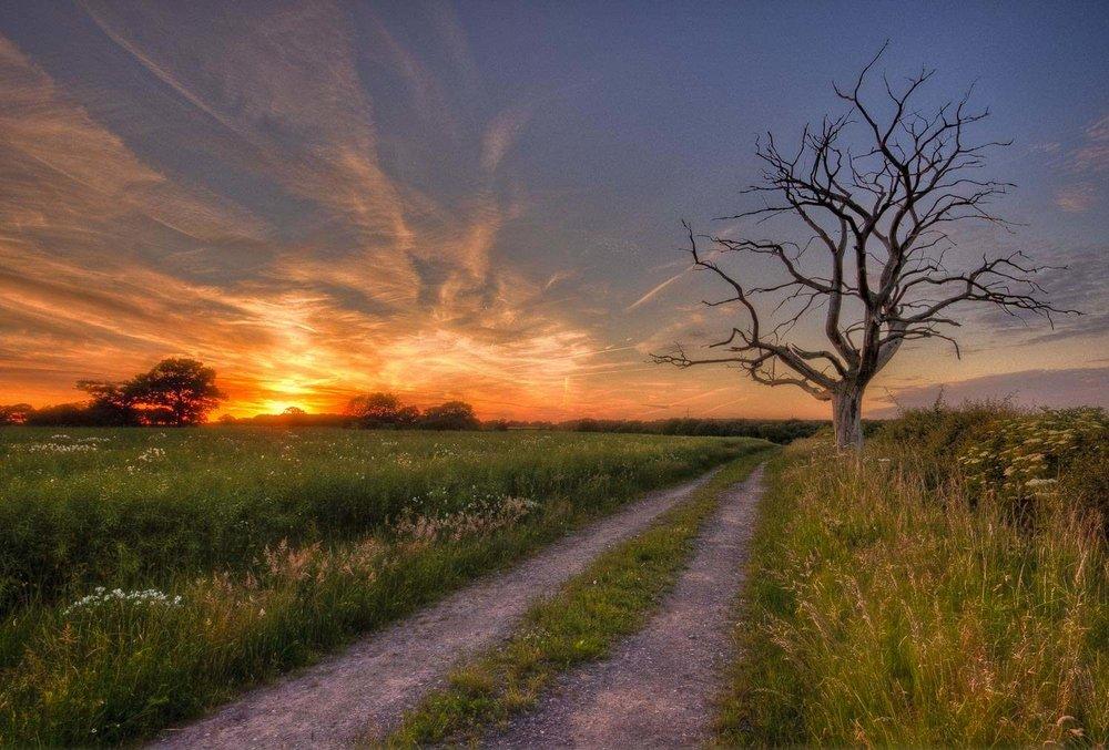 solstice solitude