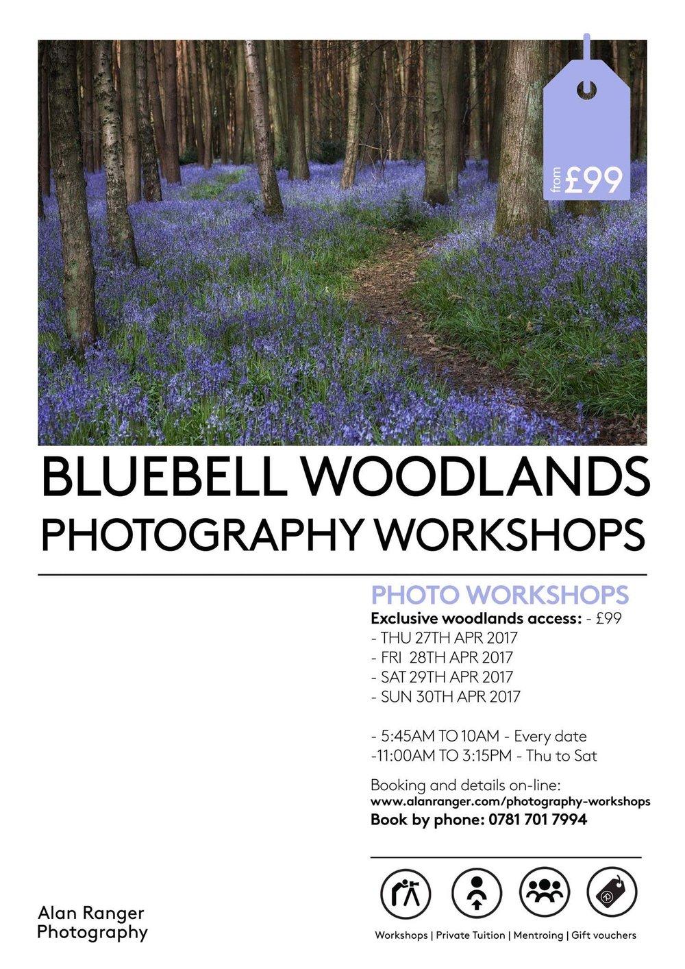 bluebell woodland photography workshops