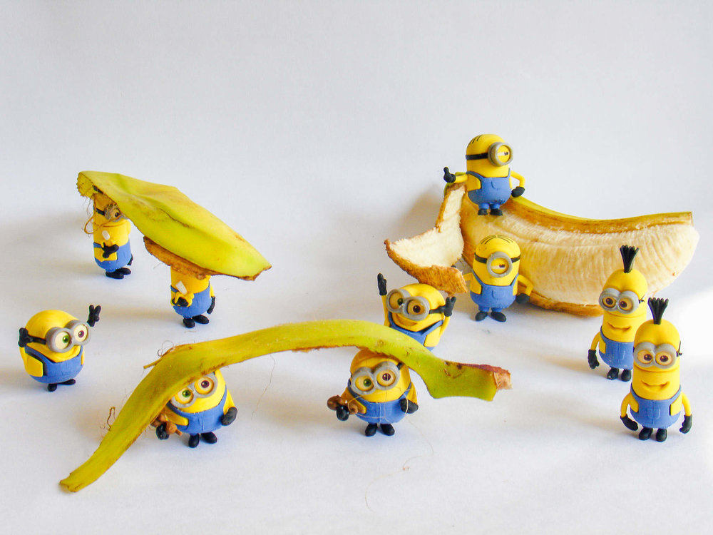 Title of Image:    Coffee Rescue Minion's Banana Raid Description: She fell in the cup making coffee her friend helps her. Minions are carrying banana to their blood – thirsty bedrooms and are going to make a hammock for a bed. How did you take the shot? We placed them in positions then I had to be very still and I took a photo of them. When you look at the photo what do you think?      I think that if I were in a mug I would want help and I would be hurt. I would love to make my own hammock of banana skins. How hard was it to take the shot?    I had to hold the camera very still and I had to try very hard not to show the background of the table in the pictures.