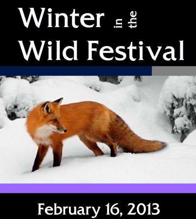 WinterintheWildFestival2013.jpg