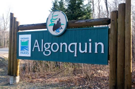 AlgonquinPark.jpg