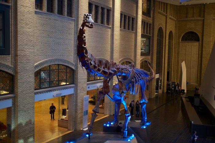 RoyalOntarioMuseumFoyer.jpg