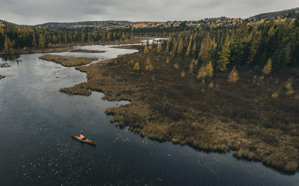 Colin Bruce - Costello Creek, Algonquin Park, Ontario