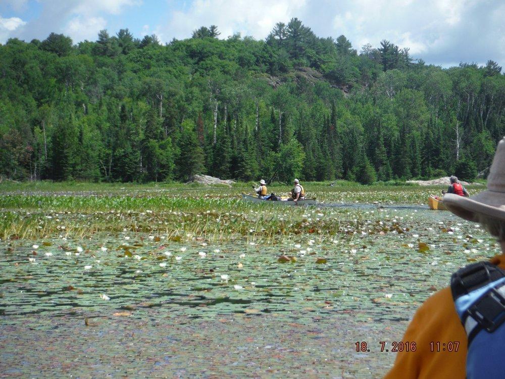 Mike Thomas -East end of Charlton Lake into Howry Creek,Killarney Provincial Park