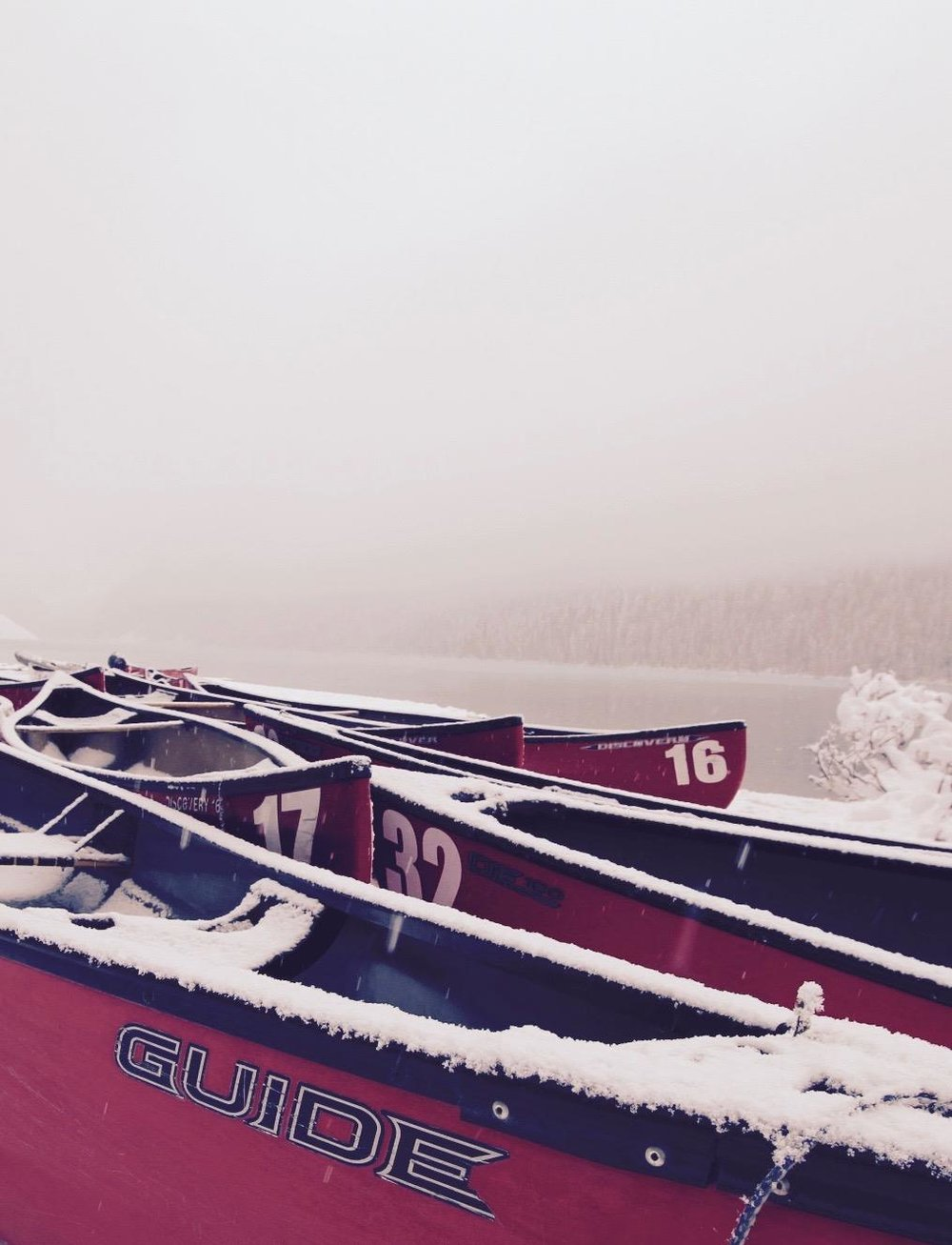 Beata Kaznowska - Winter came early this year! First snowfall in Lake Louise