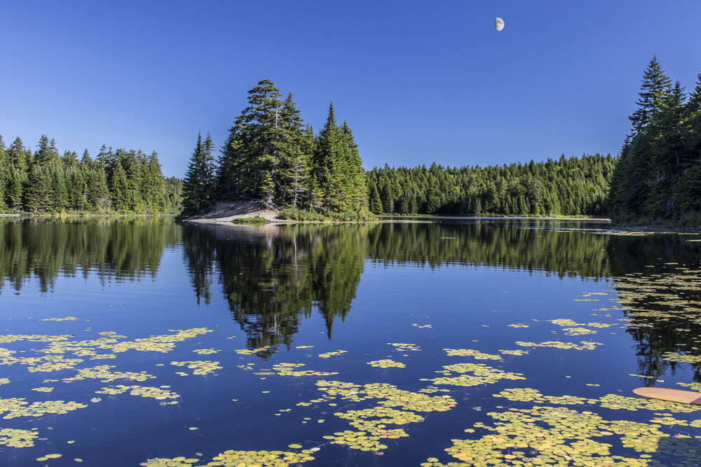 Rob Robichaud - Morning on Bennett Lake, Fundy National Park (with a curious looking moon)