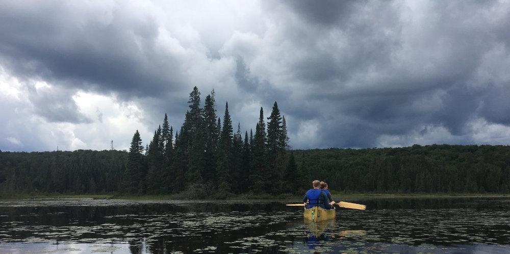 Sean Caufield -Whisky Jack Bay, Canoe Lake