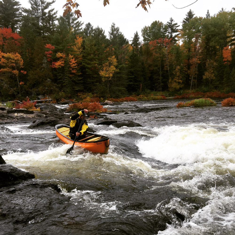 Krista Petrie-Wallace - Lower Madawaska River.