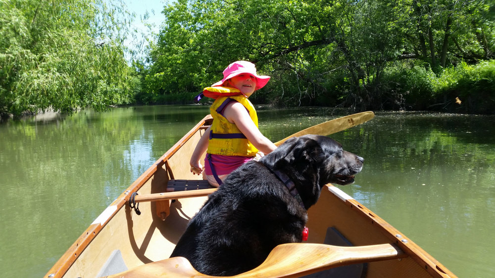 Dave West - Most saturday mornings my granddaughter, Roxy-dog and I are exploring the quiet reaches of Duffins Crk. They both love canoeing and I love their company.