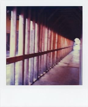 Polaroid_SX70_XczL84_09.jpg