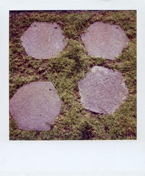 Polaroid_SX70_XczL84_17.jpg