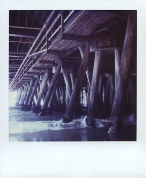 Polaroid_SX70_XczL84_25.jpg