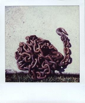 Polaroid_SX70_XczL84_34.jpg