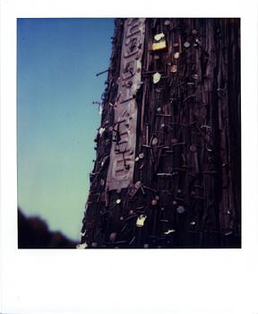 Polaroid_SX70_XczL84_36.jpg