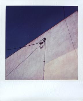 Polaroid_SX70_XczL84_40.jpg