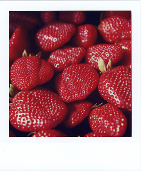 Polaroid_SX70_15_Strawberries.jpg