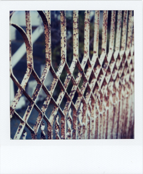 Polaroid_SX70_31_white gate.jpg