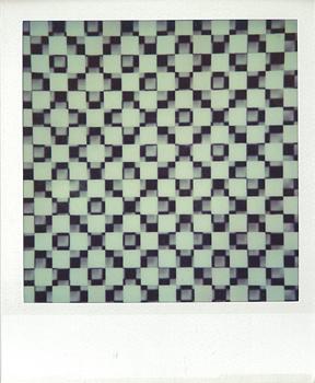 Polaroid_SX70_37_grid.jpg.jpg
