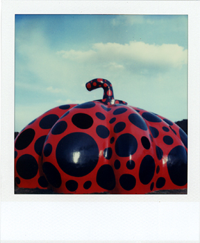 Polaroid Naoshima 7_Pumpkin.jpg