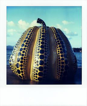 Polaroid Naoshima 9_Pumpkin.jpg
