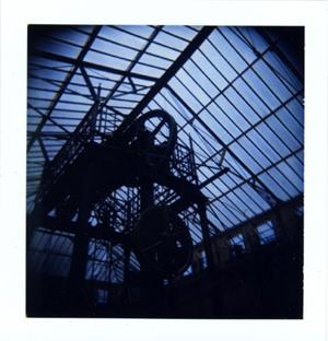 Polaroid_08_holga_brad.jpg.jpg