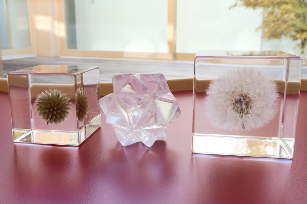Usagi Nedoko Sola Cube 09.jpg