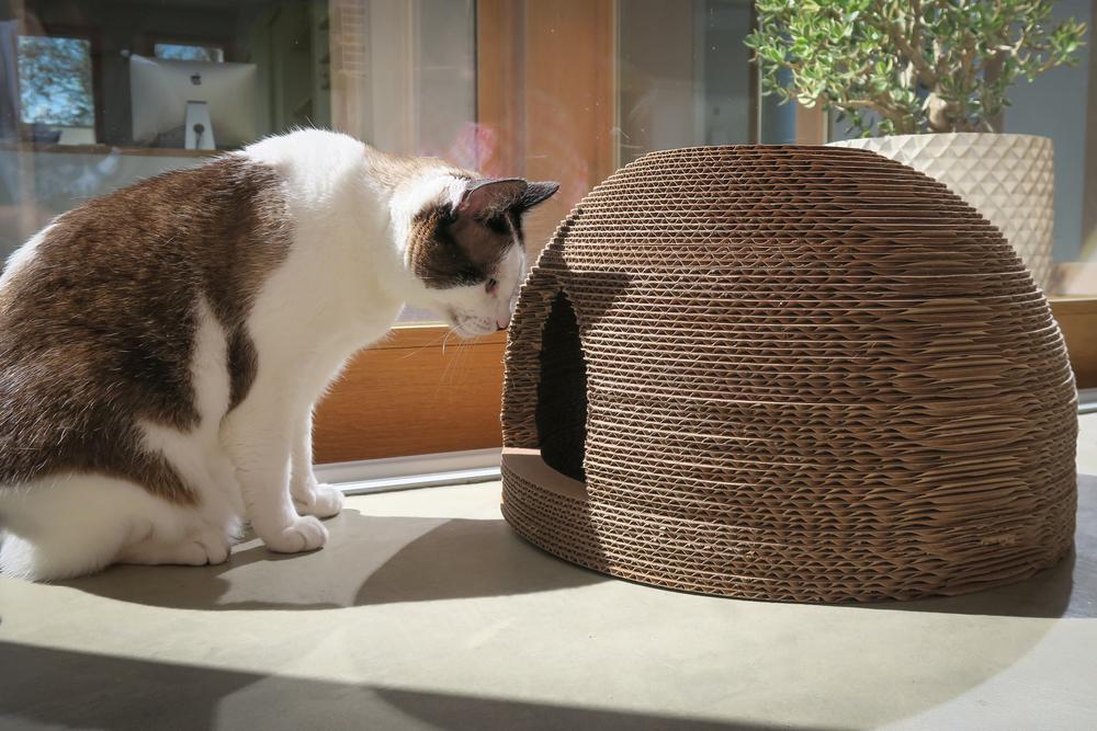 Cardboard Cat Scratcher Dome House 07