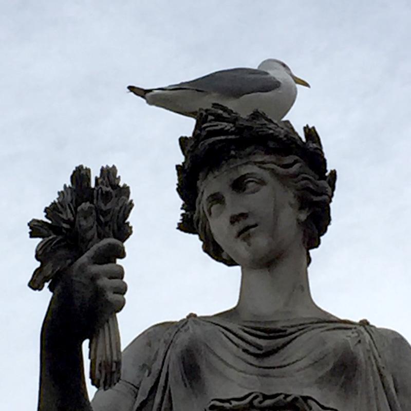 Europe_birdhead.jpg