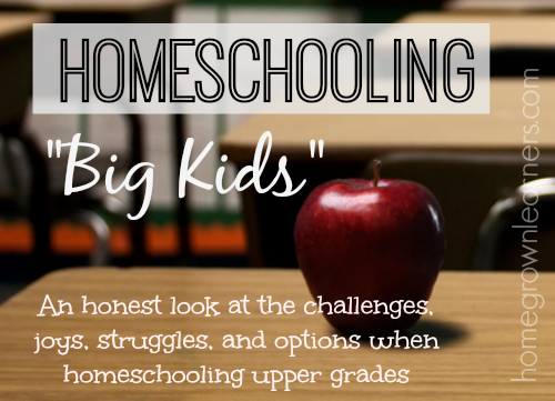 Homeschooling Big Kids